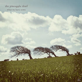 PINEAPPLE THIEF - WHAT WE HAVE SOWN -DIGI-