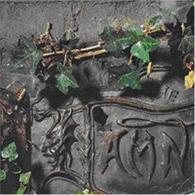 DAMNED - BLACK ALBUM -DELUXE-
