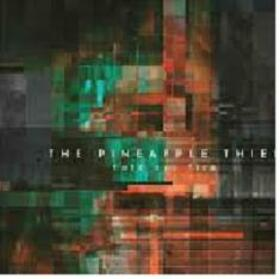 PINEAPPLE THIEF - HOLD OUR FIRE -DIGI-