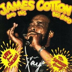 COTTON, JAMES - LIVE FROM CHICAGO!