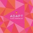 GLOBAL UNDERGROUND - GLOBAL UNDERGROUND: ADAPT 5 (Compact Disc)