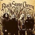 BLACK STONE CHERRY - BLACK STONE CHERRY (Disco Vinilo LP)