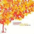 COUNTING CROWS - FILMS ABOUT GHOSTS -BEST OF- (Compact Disc)