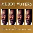WATERS, MUDDY - COLLECTION -18 TR.- (Compact Disc)