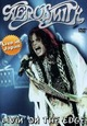 AEROSMITH - LIVIN' ON THE EDGE (Digital Video -DVD-)