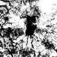 ESPLENDOR GEOMETRICO - ACERO DEL PARTIDO / HEROES DEL TRABAJO -LTD- (Disco Vinilo LP)
