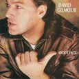 GILMOUR, DAVID - ABOUT FACE (Compact Disc)