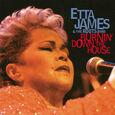 JAMES, ETTA - BURNIN' DOWN THE HOUSE (Disco Vinilo LP)