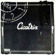 CICATRIZ - 4 AÑOS, 2 MESES Y 1 DIA (Compact Disc)