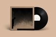 ALLRED, DAVID - FELT THE TRANSITION (Disco Vinilo LP)