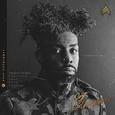 CULPEPPER, JOEL - SGT CULPEPPER (Disco Vinilo LP)