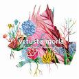 VETUSTA MORLA - MISMO SITIO DISTINTO LUGAR (Compact Disc)