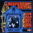 JEFFERSON AIRPLANE - AT GOLDEN GATE PARK (Compact Disc)