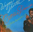SHORTER, WAYNE - NATIVE DANCER (Compact Disc)