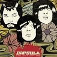 CAPSULA - IN THE LAND OF SILVER SOULS (Disco Vinilo LP)