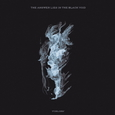 ANSWER LIES IN THE BLACK VOID - FORLORN (Compact Disc)