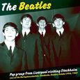 BEATLES - POP GROUP FROM LIVERPOOL (Disco Vinilo LP)