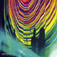 TAME IMPALA - LIVE VERSIONS (Disco Vinilo LP)