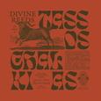 CHALKIAS, TASSOS - DIVINE REEDS: OBSCURE RECORDINGS (Disco Vinilo LP)