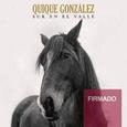 GONZALEZ, QUIQUE - SUR EN EL VALLE (ED. FIRMADA)  CD (Compact Disc)