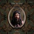ROSS, JOEL - WHO ARE YOU? (Disco Vinilo LP)