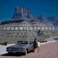 PINEAPPLE THIEF - YOUR WILDERNESS -DIGI- (Compact Disc)