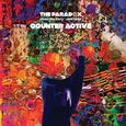PARADOX - COUNTER ACTIVE (Disco Vinilo LP)