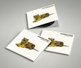 APARTAMENTOS ACAPULCO - AÑO DEL TIGRE (Compact Disc)
