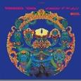 GRATEFUL DEAD - SKELETONS FROM THE CLOSET -BEST OF- HQ (Disco Vinilo LP)