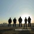 LOS LOBOS - NATIVE SONS -LTD- (Disco Vinilo LP)