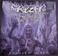 FROZEN SOUL - ENCASED IN ICE -EP- (Disco Vinilo LP)