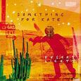 SOMETHING FOR KATE - DESERT LIGHTS -DELUXE- (Compact Disc)