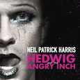 MUSICAL - HEDWIG & THE ANGRY INCH -LTD- (Disco Vinilo LP)