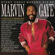GAYE, MARVIN - EVERY GREAT MOTOWN HIT OF MARVIN GAYE -HQ- (Disco Vinilo LP)