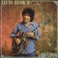 BISHOP, ELVIN - BIG FUN (Compact Disc)