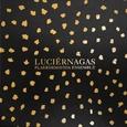 PLAERDEMAVIDA ENSEMBLE - LUCIERNAGAS (Compact Disc)