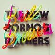NEW PORNOGRAPHERS - BRILL BRUISERS (Disco Vinilo LP)