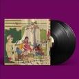 ANIMAL COLLECTIVE - FEELS -HQ- (Disco Vinilo LP)