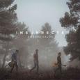 VALOR, ANDREU - INSURRECTE (Disco Vinilo LP)