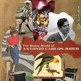 JOBIM, ANTONIO CARLOS - WARM WORLD OF (Compact Disc)
