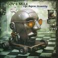 GOV'T MULE - LIFE BEFORE INSANITY -HQ- (Disco Vinilo LP)