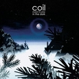 COIL - MUSICK TO PLAY IN THE.. (Disco Vinilo LP)