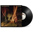 ECHO & THE BUNNYMEN - CROCODILES -HQ- (Disco Vinilo LP)