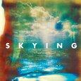 HORRORS - SKYING (Disco Vinilo LP)