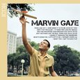 GAYE, MARVIN - ICON (Compact Disc)