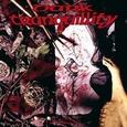 DARK TRANQUILLITY - MIND'S I (Compact Disc)
