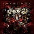 ABORTED - ENGINEERING THE DEAD (Compact Disc)