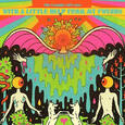 FLAMING LIPS - WITH A LITTLE HELP FROM MY FWENDS (Compact Disc)