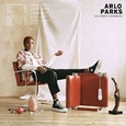 PARKS, ARLO - COLLAPSED IN SUNBEAMS (Disco Vinilo LP)